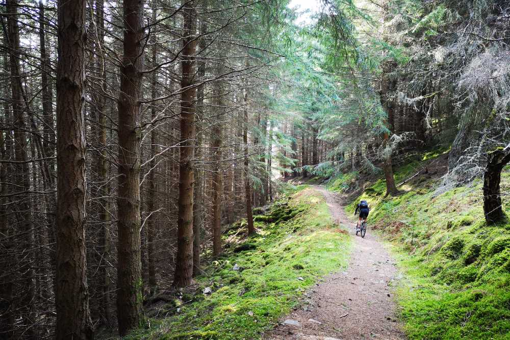 Cyclist on the South Loch Ness Trail