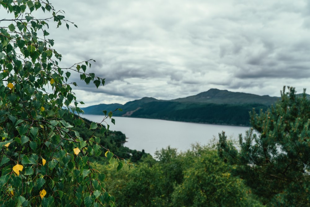 View of Loch Ness from the corkscrew Road on the South Loch Ness Trail