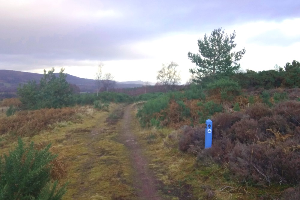 South Loch Ness Trail signpost on Drumashie Moor
