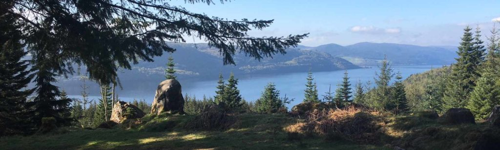 View of Loch Ness, just off the trail at Inverfarigaig