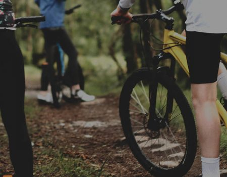 Close up of mountain bikes in a forest