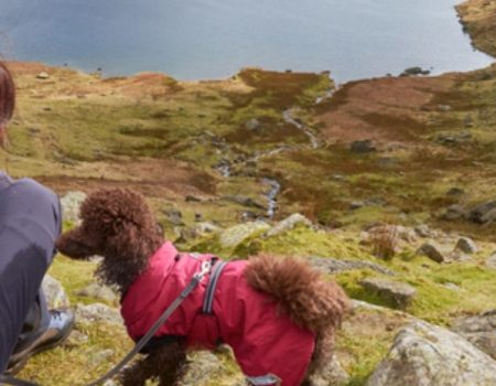 Lady hiking with her dog in the highlands