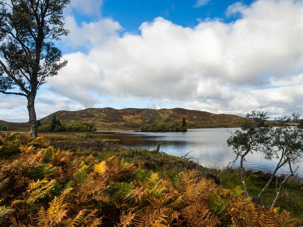 Loch Tarff in the Autumn with golden bracken in the foreground