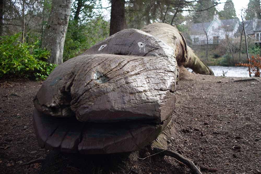 ALoch Ness Monster sculpture on Ness Islands on River Ness